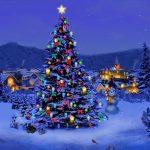 Kaasschotel : Ideaal voor Kerst en Nieuwjaar